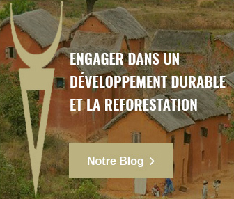 Développement et reforestation Tsarasoa Lodge