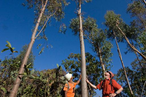 Randonnée - Tsarasoa Lodge Madagascar