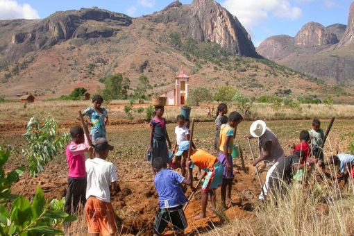 Reboisement - Tsarasoa Lodge Madagascar